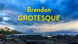 Download Font Brandon Grotesque Full Family