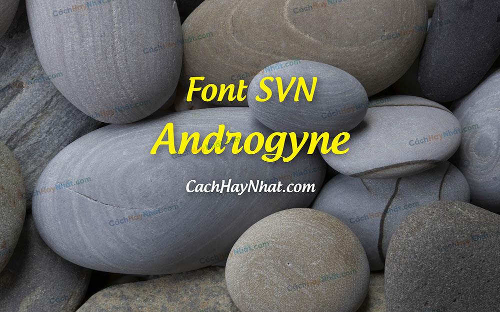 SVN-Androgyne Việt Hóa