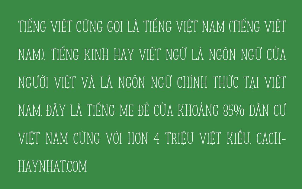 đoạn văn mô tả font SVN Storyteller Việt hóa