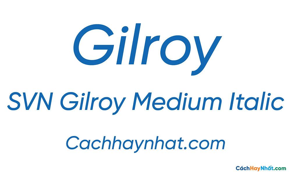SVN Gilroy Medium Italic
