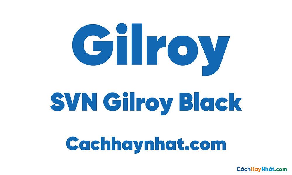 SVN Gilroy Black