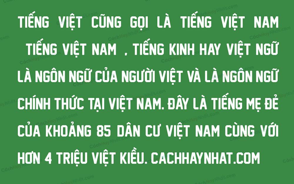 đoạn văn font SVN New Athletic M54 Việt hóa