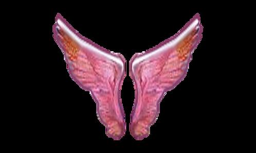 Đôi Cánh Chim PNG PSD Photoshop 14