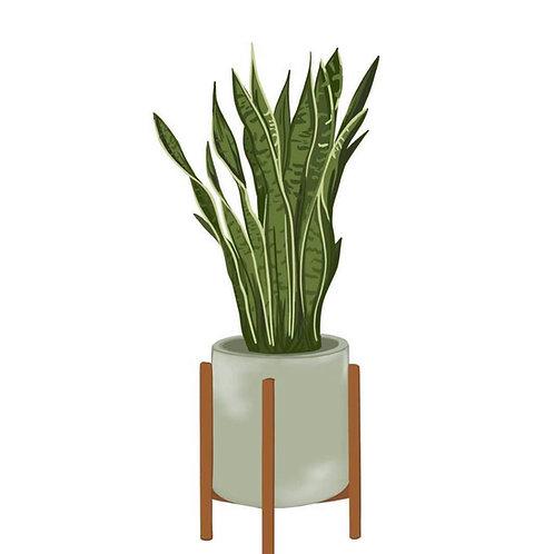 Plant Print-Peach and Bean Studio