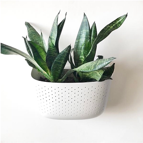 Wallygro Eco Planter