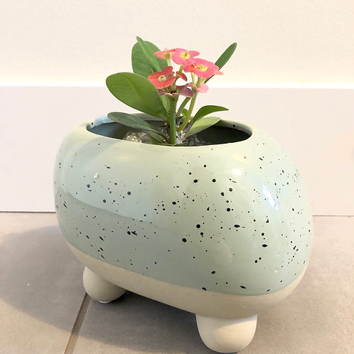 Footed speckled sage planter