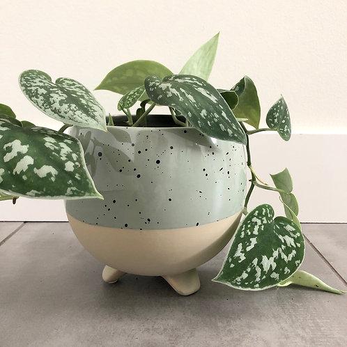 Footed speckled sage dolomite planter