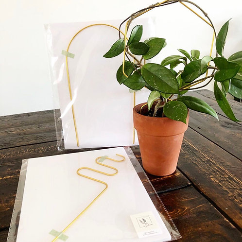 Plant Trellis -Ivy Stem