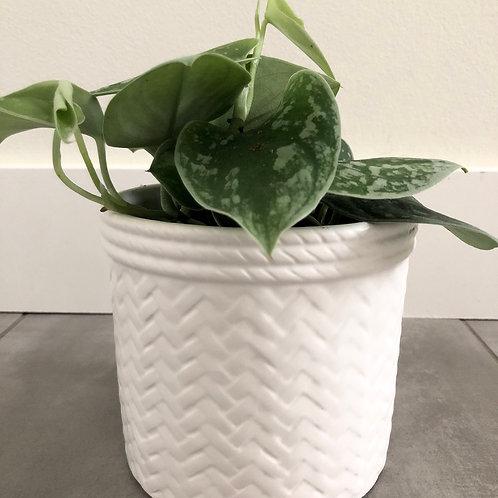 Matte white wicker pattern dolomite planter