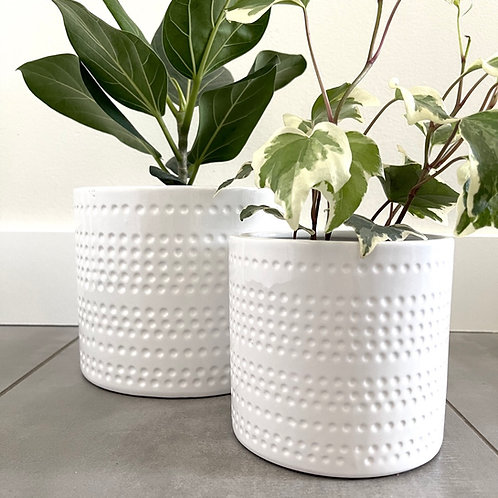 Dotted stripes dolomite planter