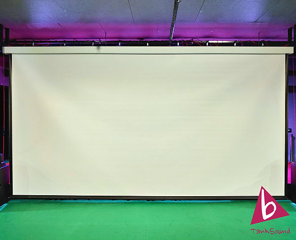 exzen 250inch screen.jpg