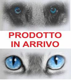 PRODOTTO IN ARRIVO 2.jpg