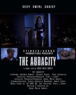 Audacity poster 2
