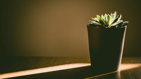 4 Myths About Minimalism