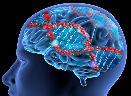 The weather and the brain – using new methods to understand developmental disorders