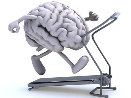 The resting brain… that never rests