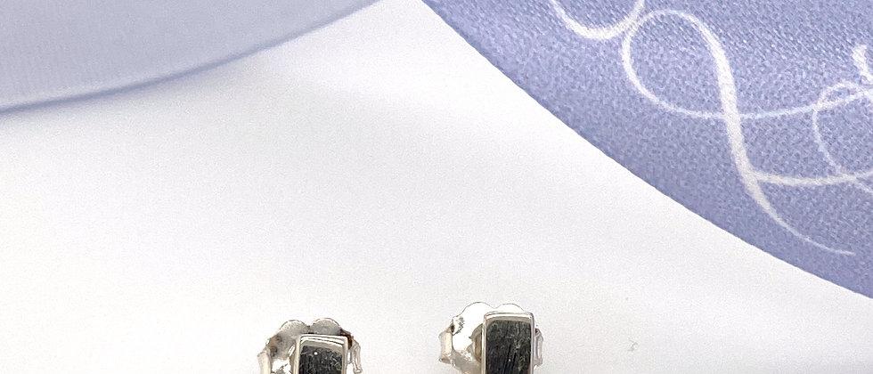 Diamond and Sterling Earrings