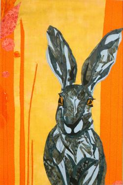 The Corn Hare