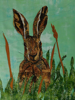The Hare That Got Away