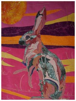The Sun Hare
