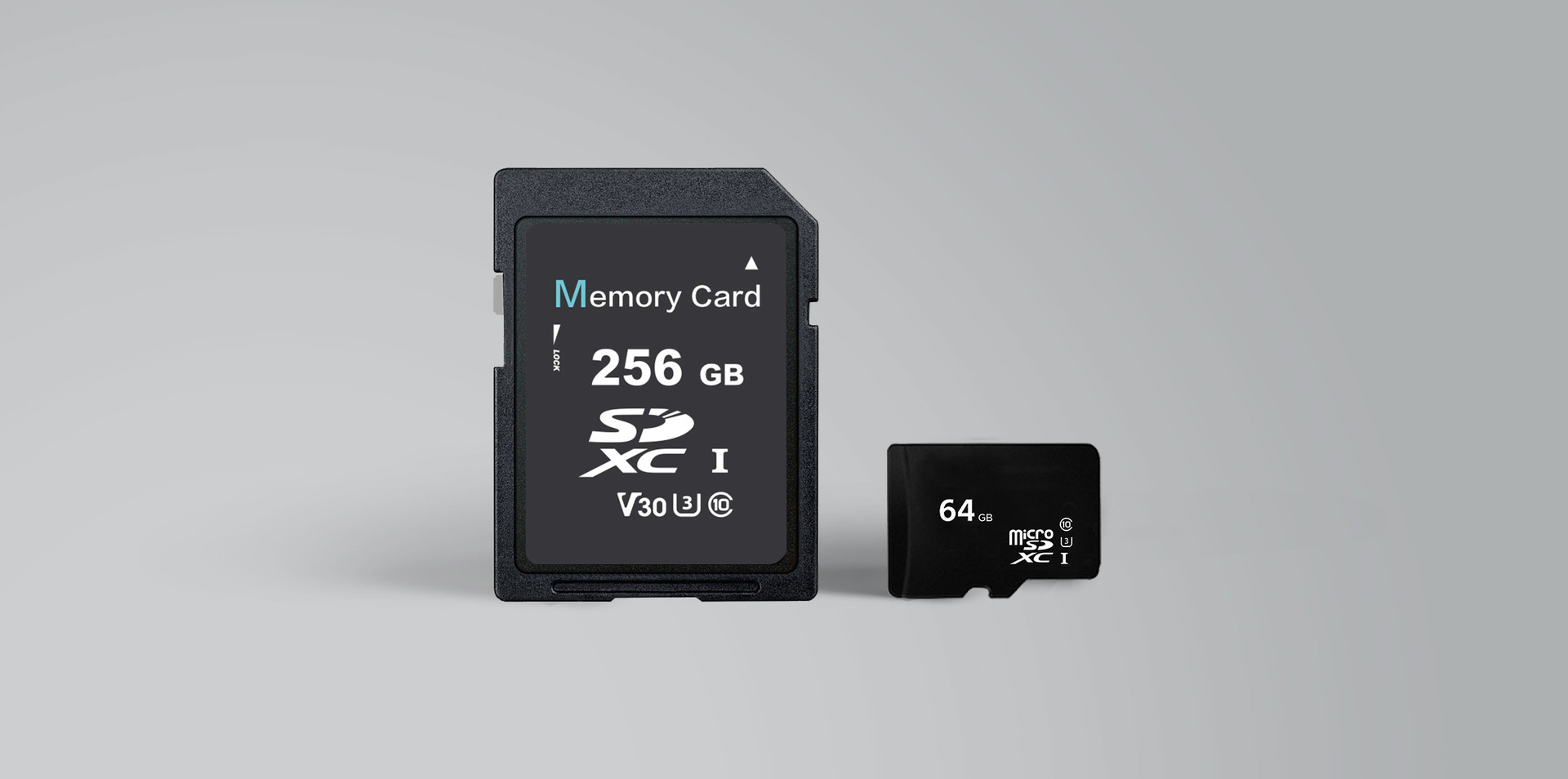Consumer-SD-&-microSD-2.jpg