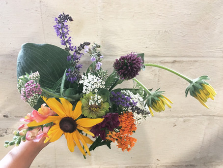 Garden Updates: Business is Blooming!