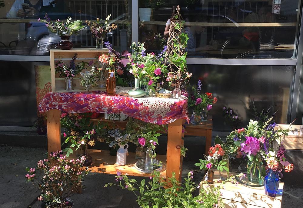 Catchfly Gardens Pop Up