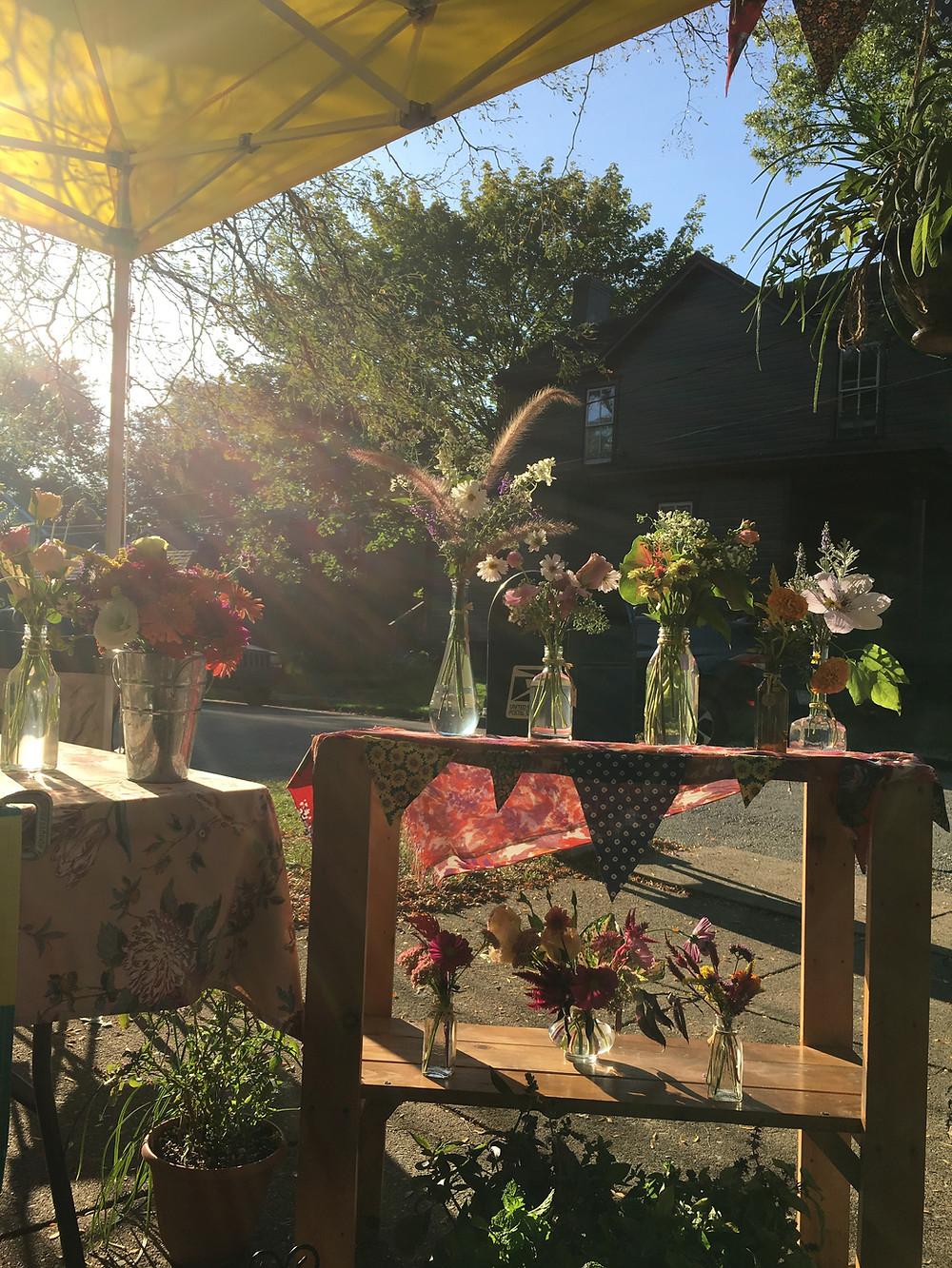 Catchfly Gardens Pop-Up