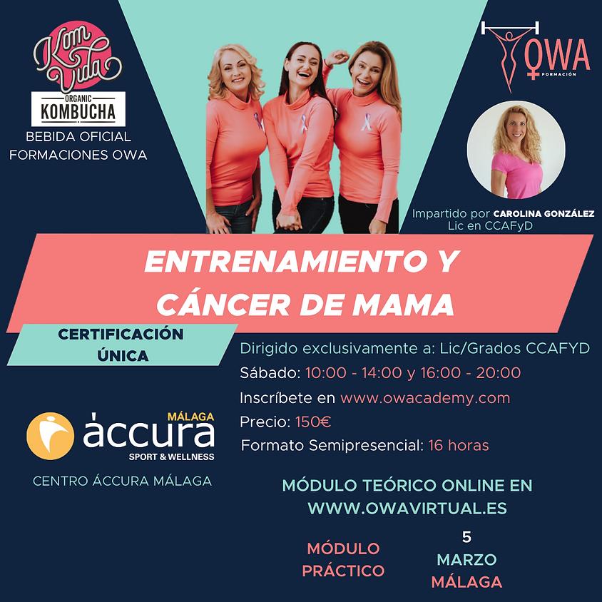 Certificación Única Entrenamiento y Cáncer de Mama Málaga