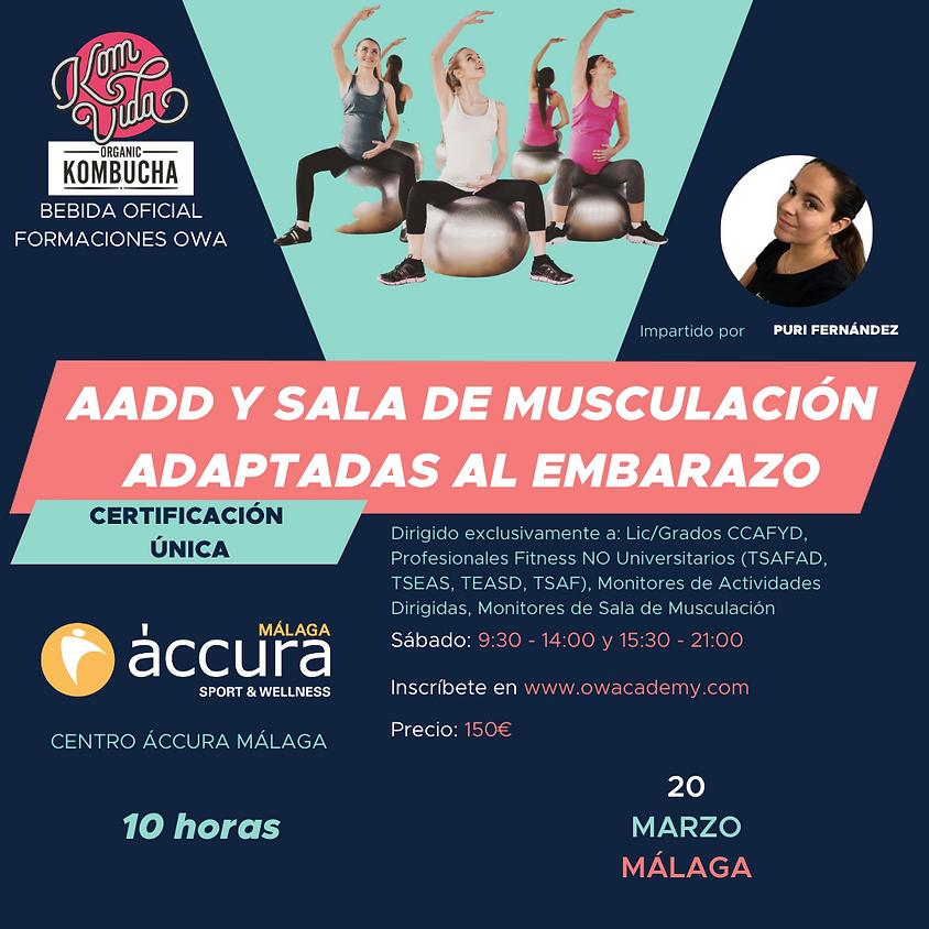 Certificación Única AADD y Sala de Musculación adaptadas al Embarazo Málaga
