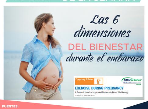 LAS 6 DIMENSIONES DEL BIENESTAR DURANTE EL EMBARAZO