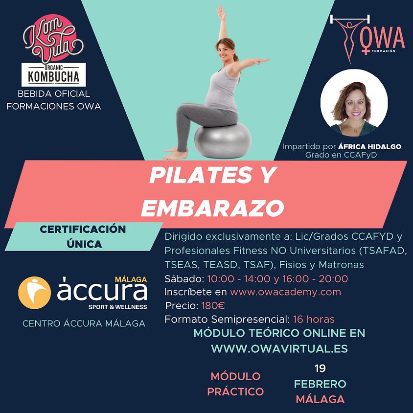 Certificación Única Pilates y Embarazo Málaga