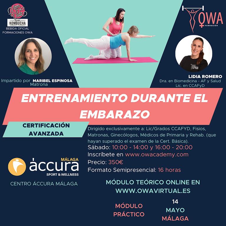 Certificación Avanzada Embarazo Málaga