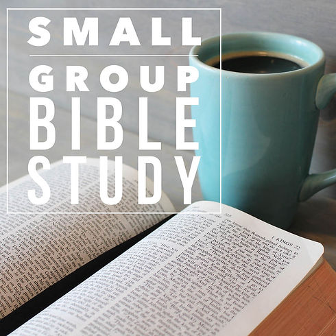 Small Group Bible Study SQUARE 2017.jpg