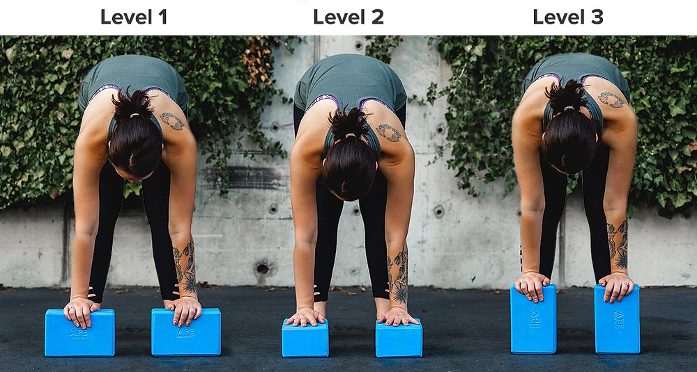 Yoga Block for Forward Bold