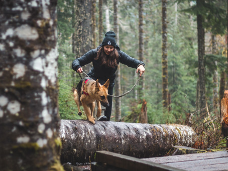 Why You'll Want to Take Your Movement Outdoors