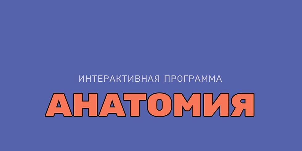 """Интерактивная программа """"Анатомия"""""""