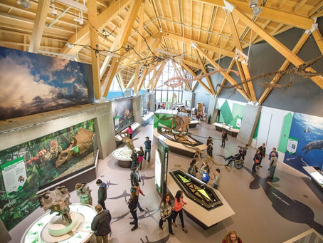 👉 AV Installation Project - Philip J. Currie Dinosaur Museum, Grande Praire, Alberta, Canada