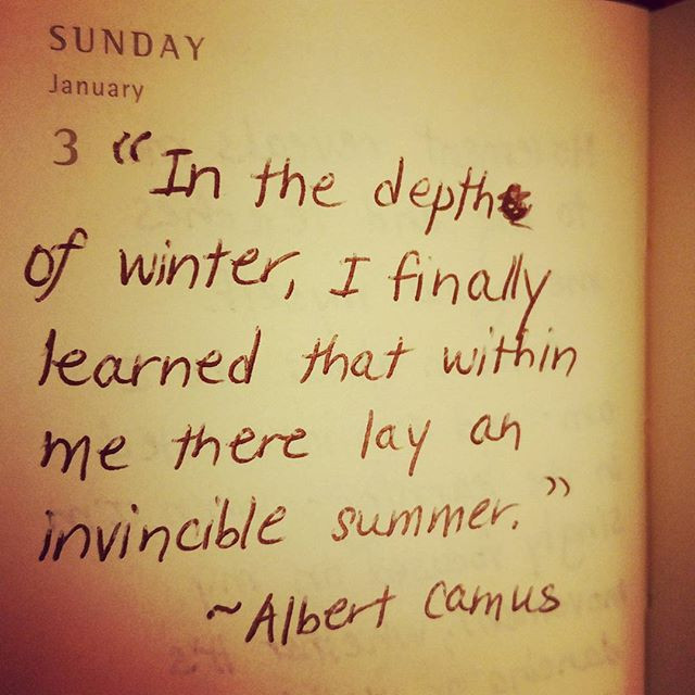 In the depth of winter, I finally learned that within me there lay an invincible summer. ~Camus