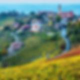 Piemont Wein und Kultur Carreisen 2020 Calanda Reisen