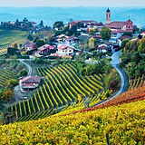 Piemonte vino cultura maggio 2020 - bus gita - calanda reisen