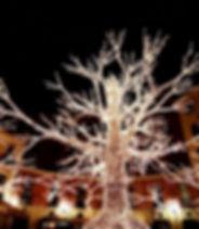 Foresta-Luminosa-Luci-DArtista-Salerno-2
