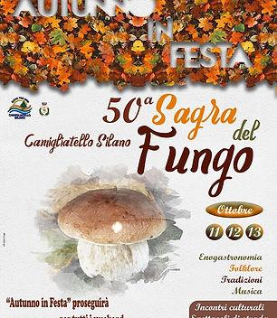 50^-Sagra-del-Fungo-2019-Camigliatello-S