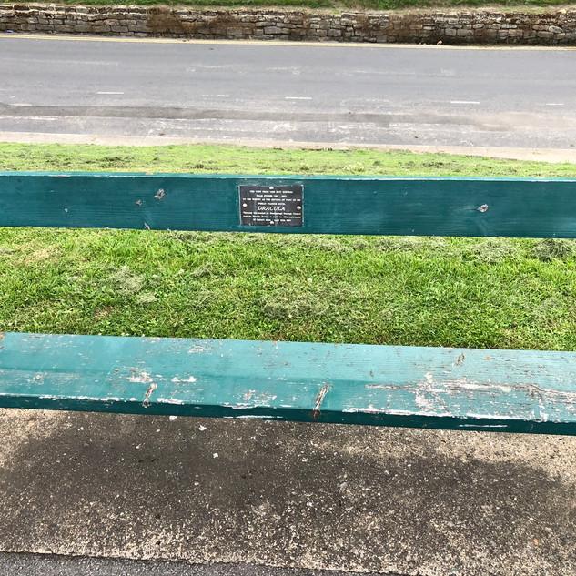 Bram Stoker Memorial Seat