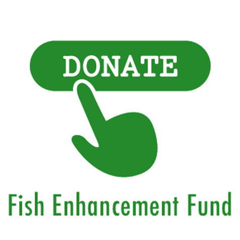 Donate to SWT's Fish Enhancement Fund