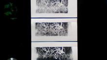 Démonstration de linogravure sur une presse en impression 3D