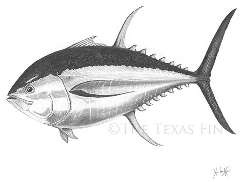 Two Votes on Tuna Print