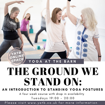The Ground We Stand On (1).png