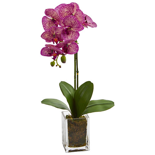 "24"" Orchid Phalaenopsis Artificial Arrangement in Vase"