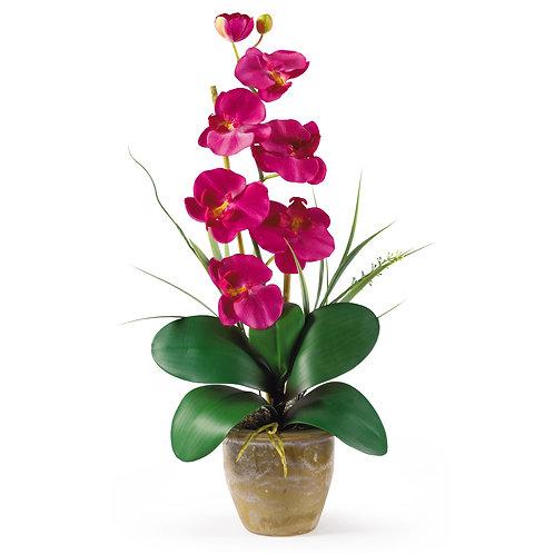Single Stem Phalaenopsis Silk Orchid Arrangement